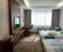 Willis Hotel Business & Wellness Zalaegerszeg