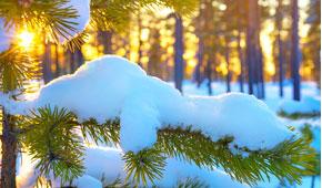 Téli Feltöltődés Hévízen